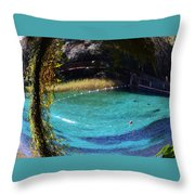 Fisheye Palm And Springs Throw Pillow