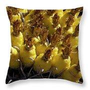 Fishhook Barrel Cactus Fruit Throw Pillow