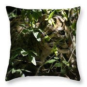 Fishing Cat Throw Pillow
