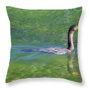 Fishing In The Springs Throw Pillow