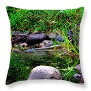 Fishing Pond Throw Pillow