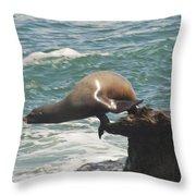Fishing Sea Lion Throw Pillow