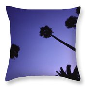 Five And A Half Palm Trees Throw Pillow