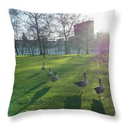 Five Ducks Walking In Line At Sunset With London Museum In The B Throw Pillow
