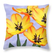 Five Of A Kind Throw Pillow