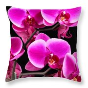 Five Orchids  Throw Pillow