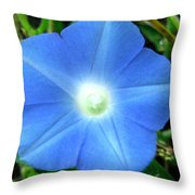 Five Point Star Morning Glory  Throw Pillow
