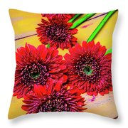 Five Red Dasies Throw Pillow
