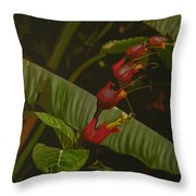 Five Red Throw Pillow