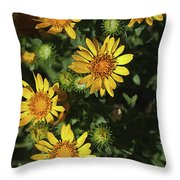 Five Yellow Flowers  Throw Pillow