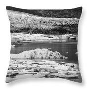 Fjallsarlon Glacier Lagoon Iceland 2348 Throw Pillow