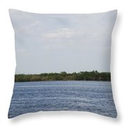 Fla Everglades Throw Pillow