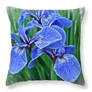 Flag Iris Blues Throw Pillow