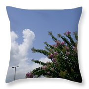 Flag With Pink Flowers Throw Pillow