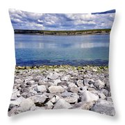 Flaggy Shore Throw Pillow