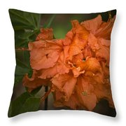 Flame Azalea Throw Pillow