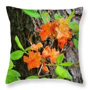 Flame Azaleas Throw Pillow