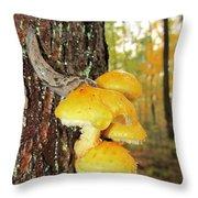 Flame Cap Mantle Slug Throw Pillow