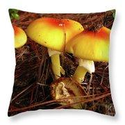 Flame Pluteus Mushroom  Throw Pillow