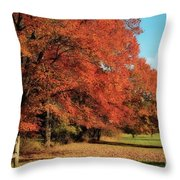 Flame Trees Throw Pillow
