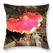 Flamenco Mushroom In Red Throw Pillow