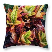 Flames Of Delight Throw Pillow