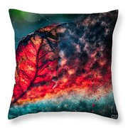 Flaming Fall Color Throw Pillow