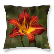 Flaming Lily Throw Pillow