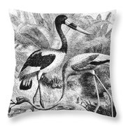 Flamingo & Jabiru Throw Pillow