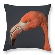 Flamingo 3 Throw Pillow