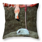 Flamingo And Chick Throw Pillow