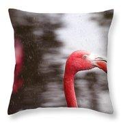 Flamingo And Rain Throw Pillow