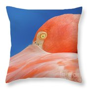 Flamingo Blues Throw Pillow
