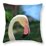 Flamingo Closeup Throw Pillow