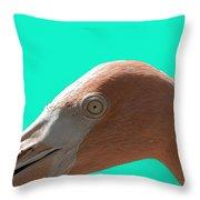 Flamingo Eye Throw Pillow