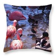 Flamingo Family  Throw Pillow