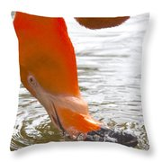 Flamingo Feeding Throw Pillow