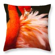 Flamingo Fluff Throw Pillow