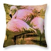 Flamingo - Id 16217-202804-4625 Throw Pillow