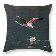 Flamingo Kick Off  Throw Pillow