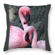 Flamingo Love Birds Throw Pillow