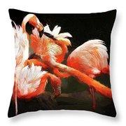 Flamingo Mingles Throw Pillow
