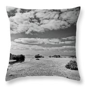 Flamingo Point Throw Pillow