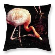 Flamingo Scratching Head Throw Pillow