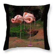 Flamingo See Flamingo Do Throw Pillow