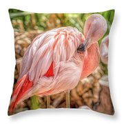 Flamingo2 Throw Pillow