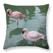 Flamingoes Posing Throw Pillow