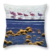 Flamingos At Torres Del Paine Throw Pillow