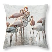 Flamingos Family Throw Pillow