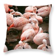 Flaminigo's Throw Pillow